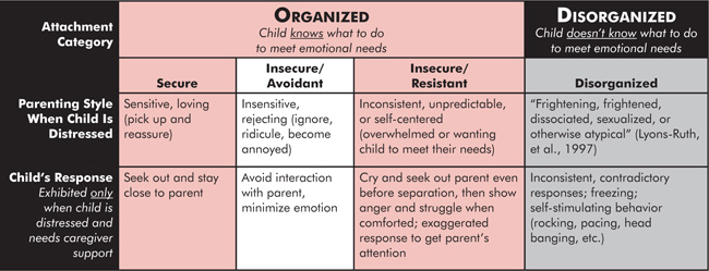 Disorganised attachment in adults